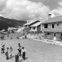 Children Playing Backyard Croquet