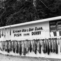 Kitimat Rod and Gun Club fish derby