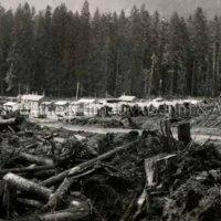 Townsite Camp