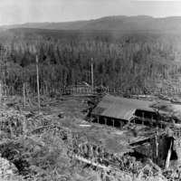 Smeltersite sawmill and burner